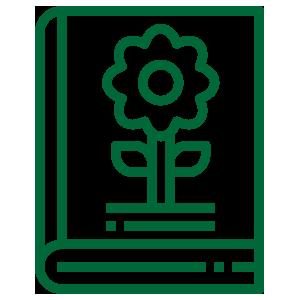 evergreen school of gardening